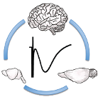 Logo Neurophys